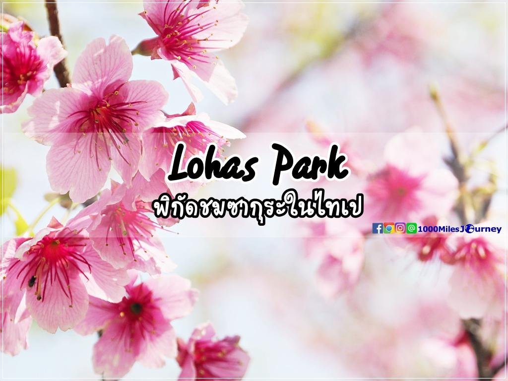 Taipei Sakaru @ Lohas Park