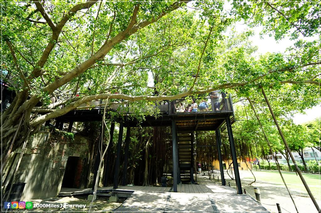 Anping Tree House (安平樹屋)