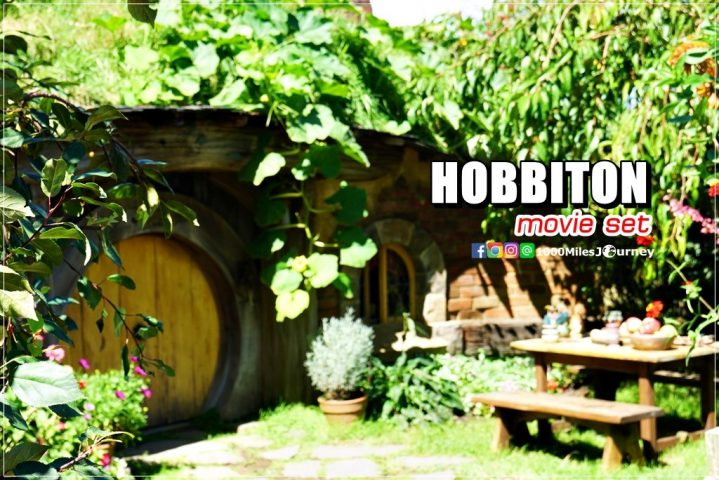 Hobbiton Movie Set @ New Zealand
