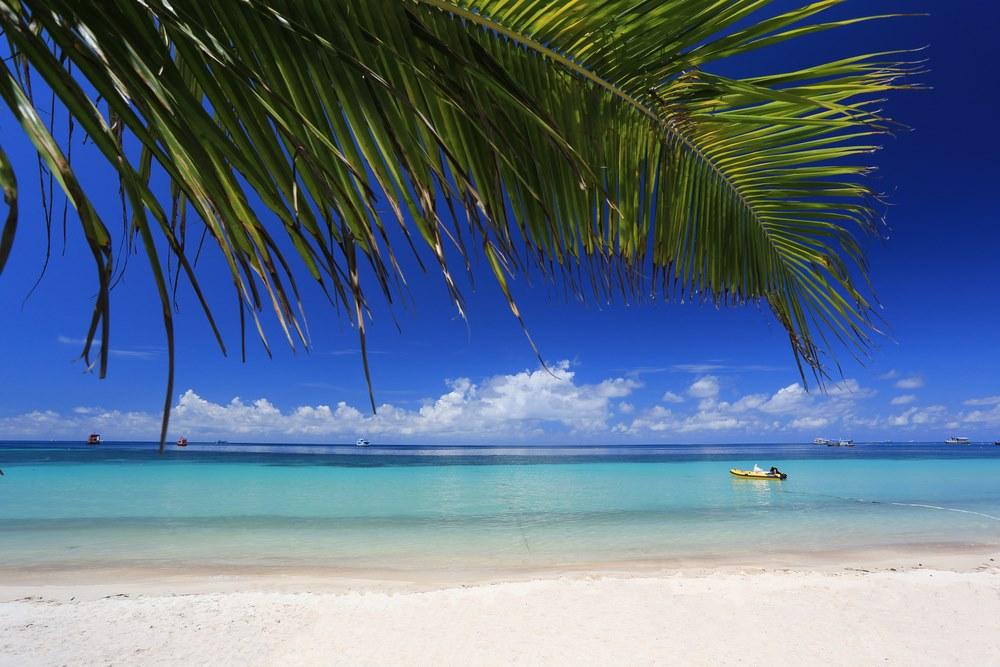 เกาะเต่า สุราษฎร์ธานี