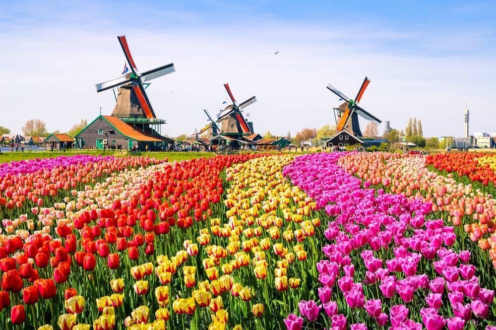 อัมสเตอร์ดัม (Amsterdam) เนเธอร์แลนด์ (Netherlands)